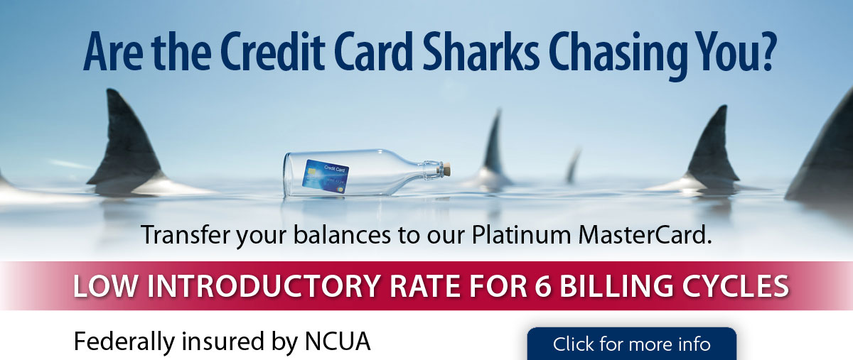 Are the Credit Card Sharks Chasing You